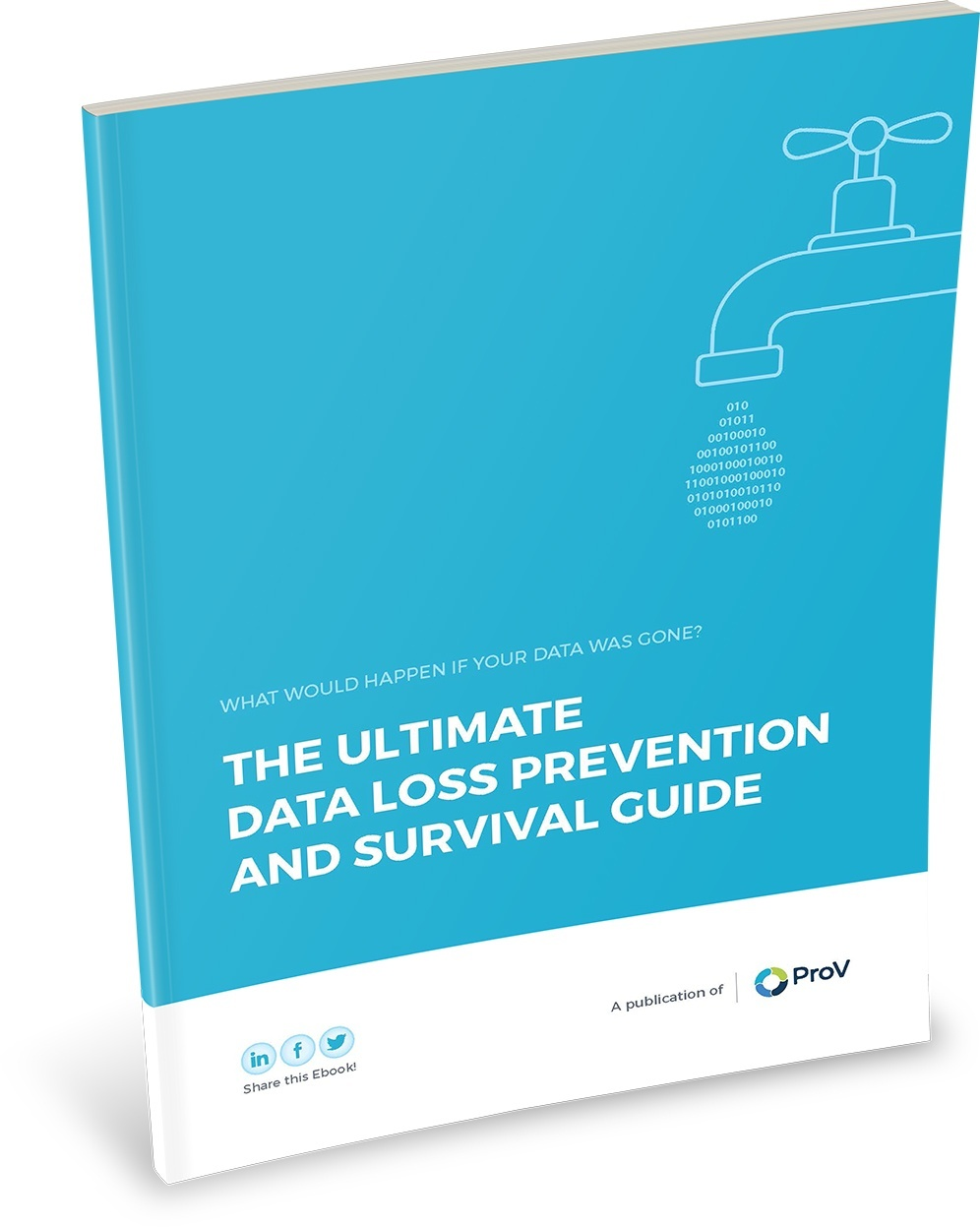 The Ultimate Data Loss Prevention and Survival Guide
